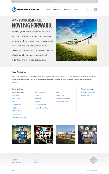 Franklin Electric Co., Inc. Website Screenshot
