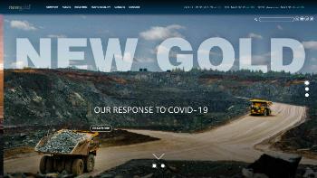New Gold Inc. Website Screenshot