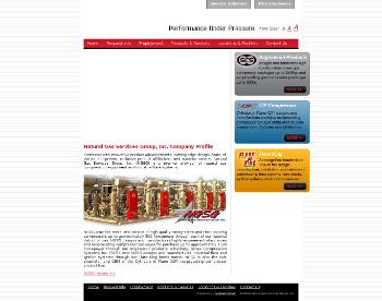 Natural Gas Services Group, Inc. Website Screenshot