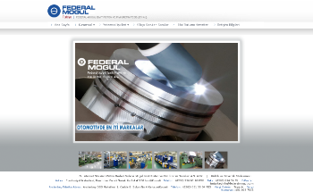 Federal-Mogul Izmit Piston Ve Pim Uretim Tesisleri A.S. Website Screenshot