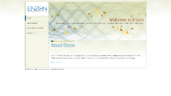 Enzon Pharmaceuticals, Inc. Website Screenshot